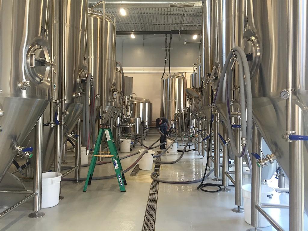 Tarpey in brewery
